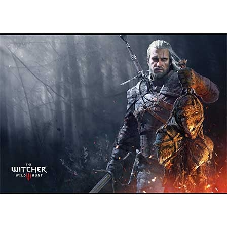 Постер «The Witcher» #01